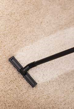 Local Carpet Cleaning Services Studio City
